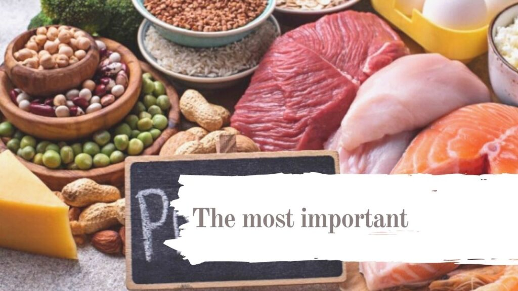 Vegan protein: what are the best products of 2020?