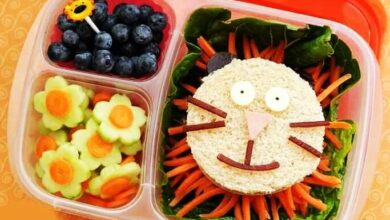 Photo of The best kids lunch box ideas