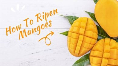 Photo of How To Ripen Mangoes