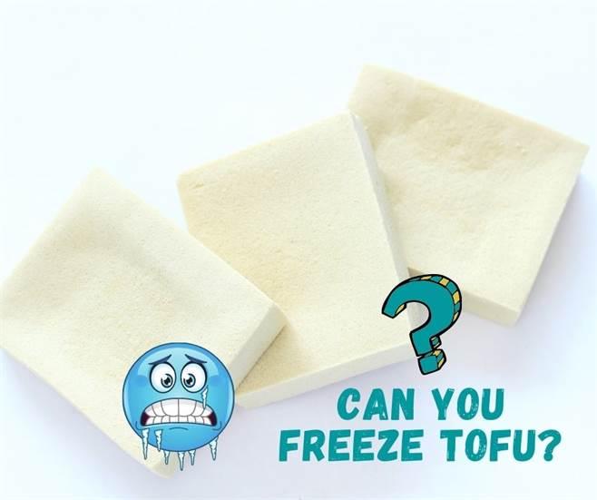 Can you freeze Tofu-img02