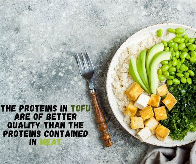 4 / The proteins in Tofu are of better quality than the proteins contained in meat-img04